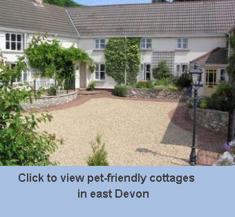 Tremendous Pet Friendly Breaks East Devon Interior Design Ideas Gentotryabchikinfo