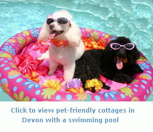 Dogs Welcome Holiday Cottages With A Swimming Pool In Devon