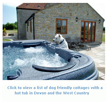 Dog Friendly Self Catering South West With Hot Tub